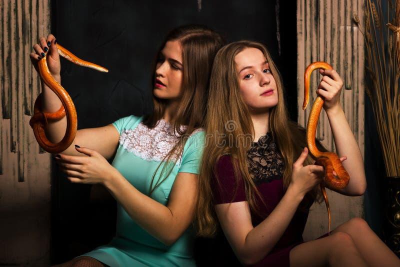 Muchachas con las serpientes fotos de archivo libres de regalías