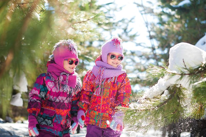 Muchachas, gemelos en el invierno en el bosque para un paseo, nieve que sopla de una rama de un árbol de navidad Niños en las cha imagenes de archivo