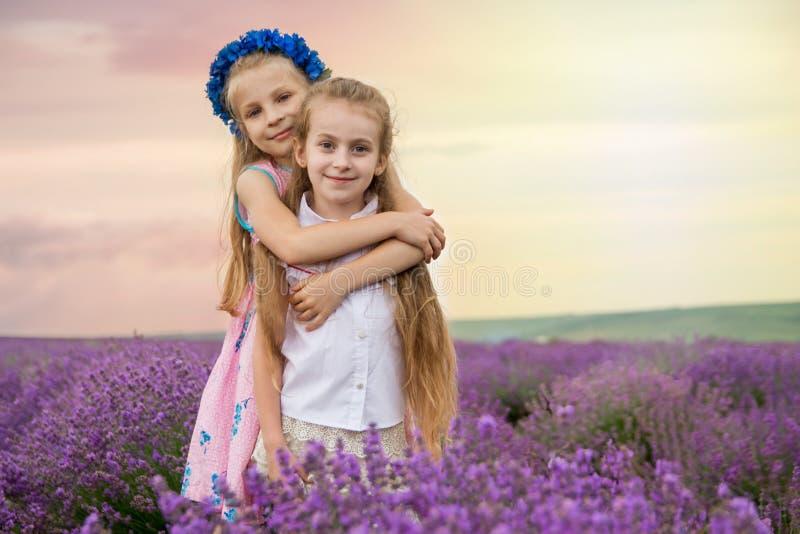 Muchachas lindas que abrazan el campo de la lavanda del omong imagen de archivo libre de regalías