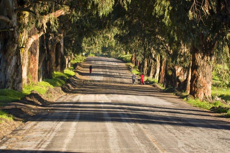 Muchachas que activan en una carretera nacional fotografía de archivo