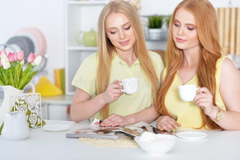 Muchachas que beben té con la revista imágenes de archivo libres de regalías