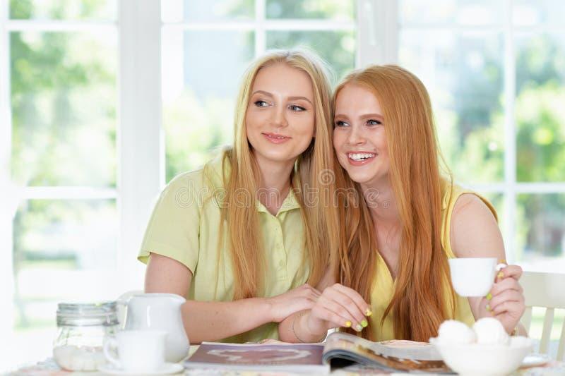 Muchachas que beben té con la revista imagen de archivo libre de regalías