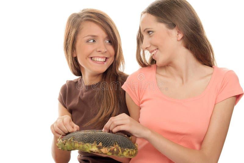 Muchachas que comen los gérmenes del girasol fotografía de archivo