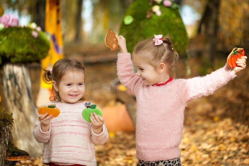 Muchachas sonrientes en el parque del otoño imagen de archivo