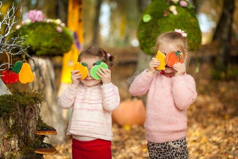 Muchachas sonrientes en el parque del otoño fotografía de archivo