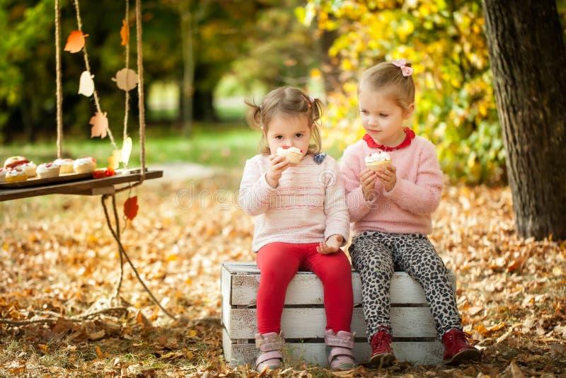 Muchachas sonrientes en el parque del otoño foto de archivo