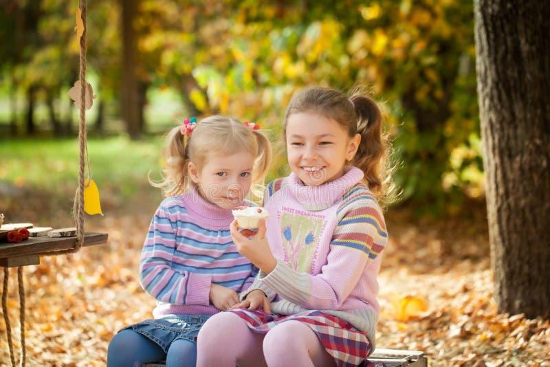 Muchachas sonrientes en el parque del otoño imágenes de archivo libres de regalías