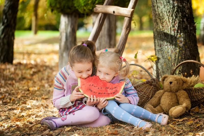 Muchachas sonrientes en el parque del otoño fotos de archivo libres de regalías