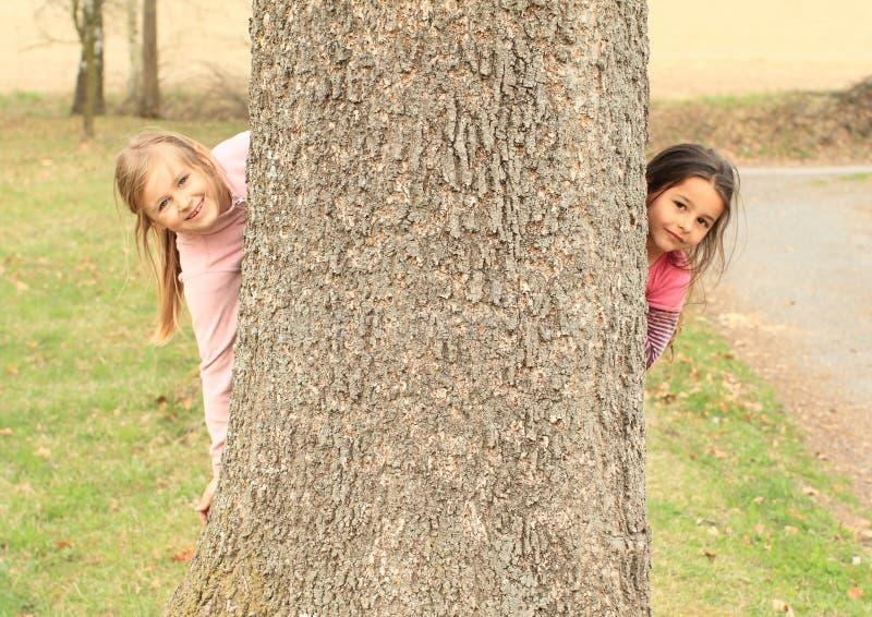Muchachas sonrientes que ocultan detrás de árbol fotografía de archivo libre de regalías