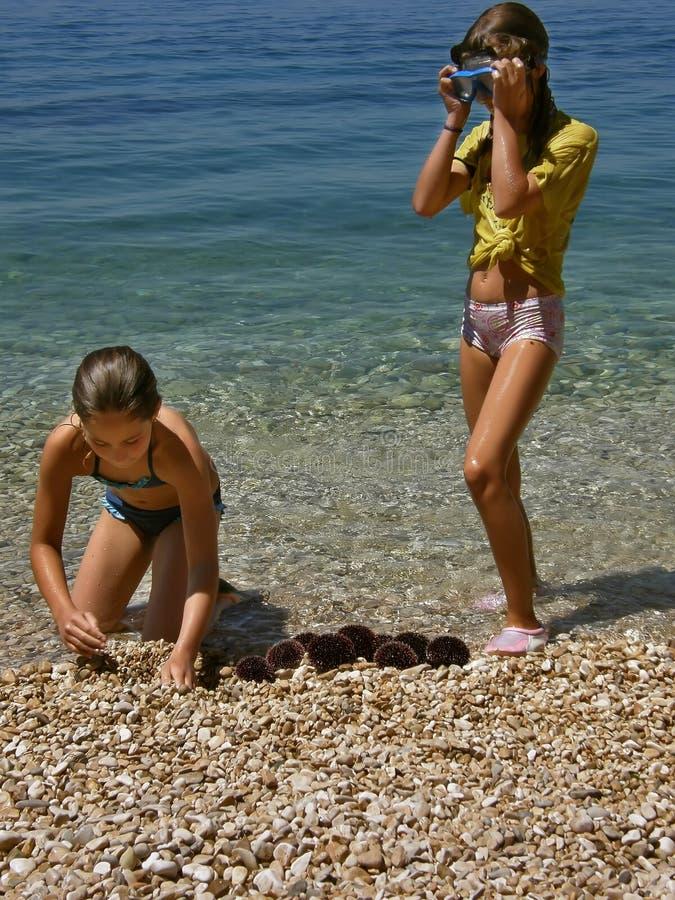 Muchachas y erizos de mar fotos de archivo