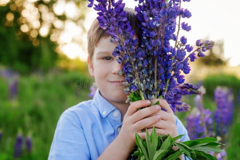 Muchacho adorable en una camiseta azul con un ramo de altramuces en un prado foto de archivo libre de regalías