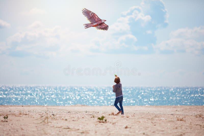 Muchacho, cometa del vuelo del muchacho en el día de verano soleado cerca de la playa fotografía de archivo libre de regalías