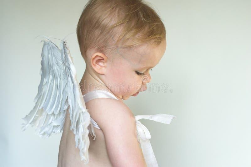Muchacho del ángel imágenes de archivo libres de regalías
