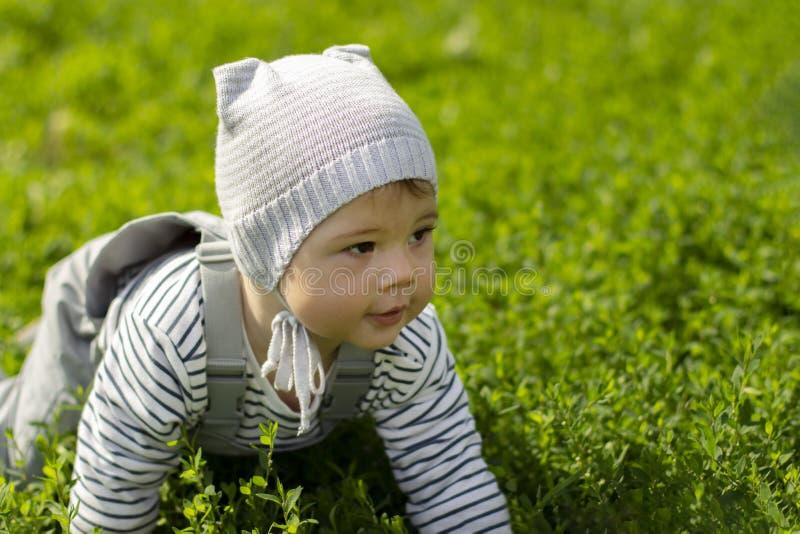 Muchacho del bebé que se arrastra en el césped verde Retrato de un primer del niño El beb? aprende arrastrarse imagenes de archivo