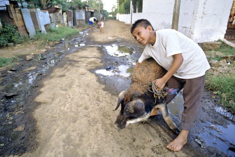 Muchacho del Latino en el paseo con el cerdo gordo nicaragua imágenes de archivo libres de regalías
