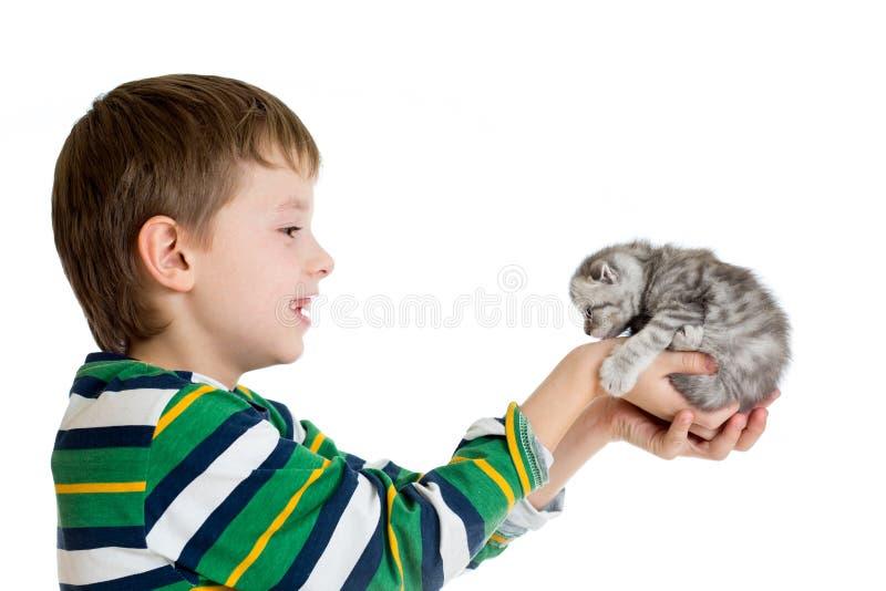 Muchacho del niño con el gatito aislado en el fondo blanco imágenes de archivo libres de regalías