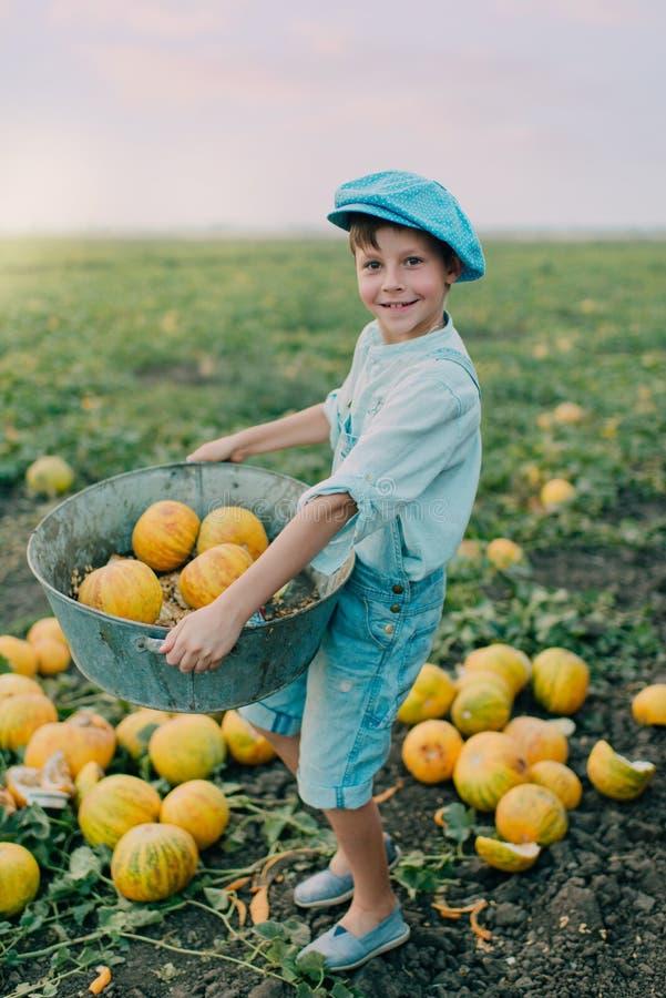 Muchacho en campo con los melones fotografía de archivo