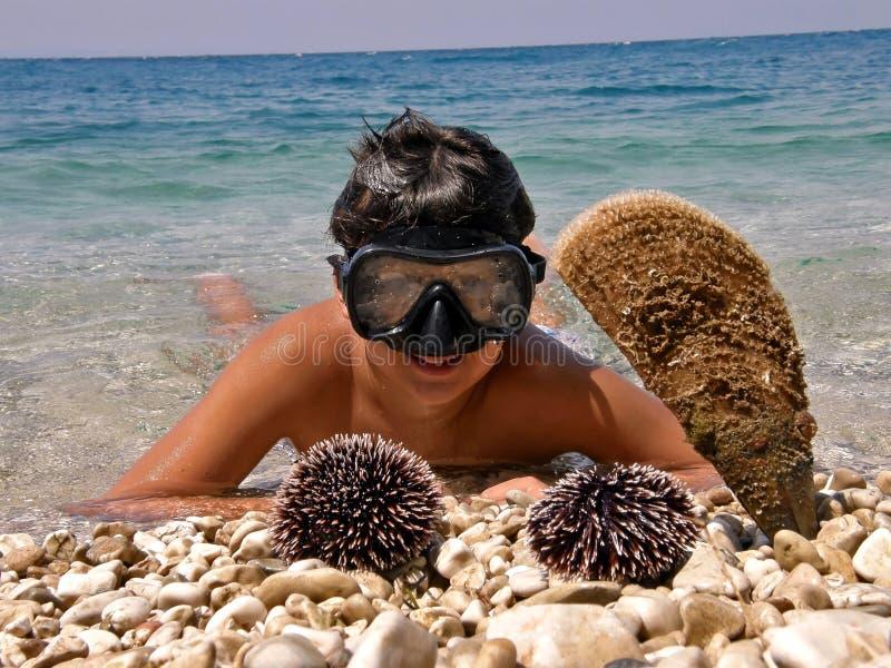Muchacho en el mar, la máscara que se zambulle y el pilluelo, crustáceos fotos de archivo libres de regalías