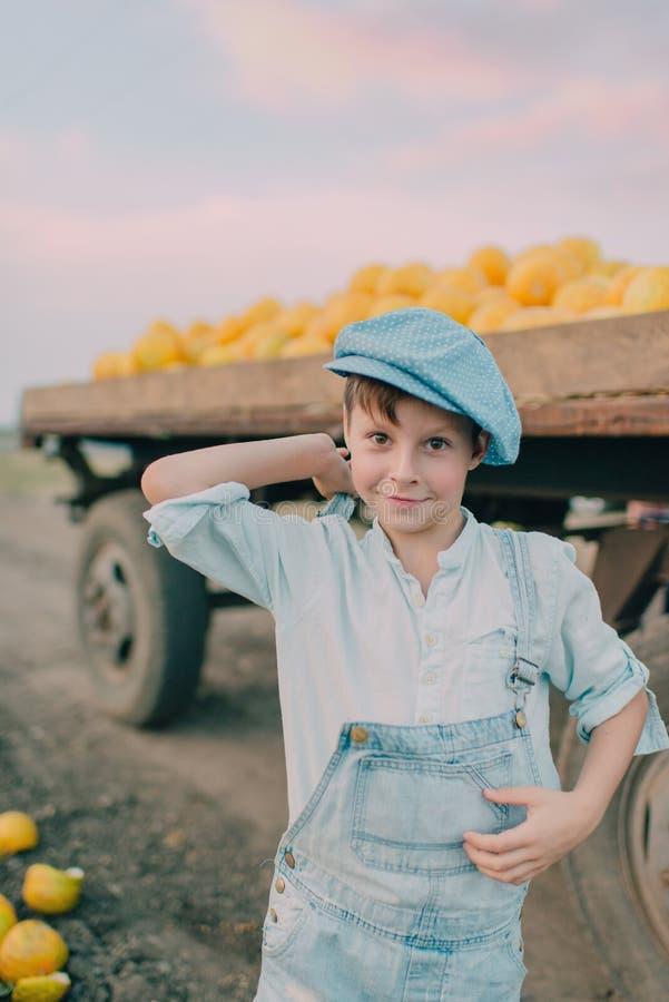Muchacho en un carro con los melones amarillos foto de archivo libre de regalías