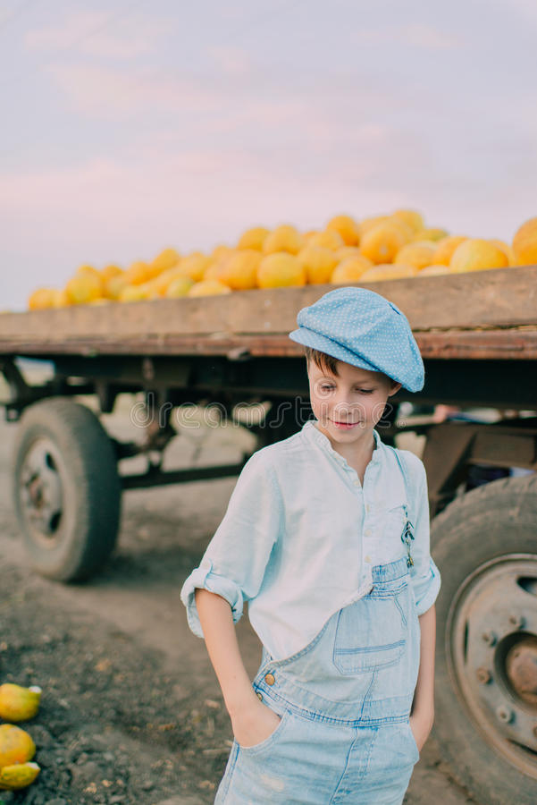Muchacho en un carro con los melones amarillos fotos de archivo