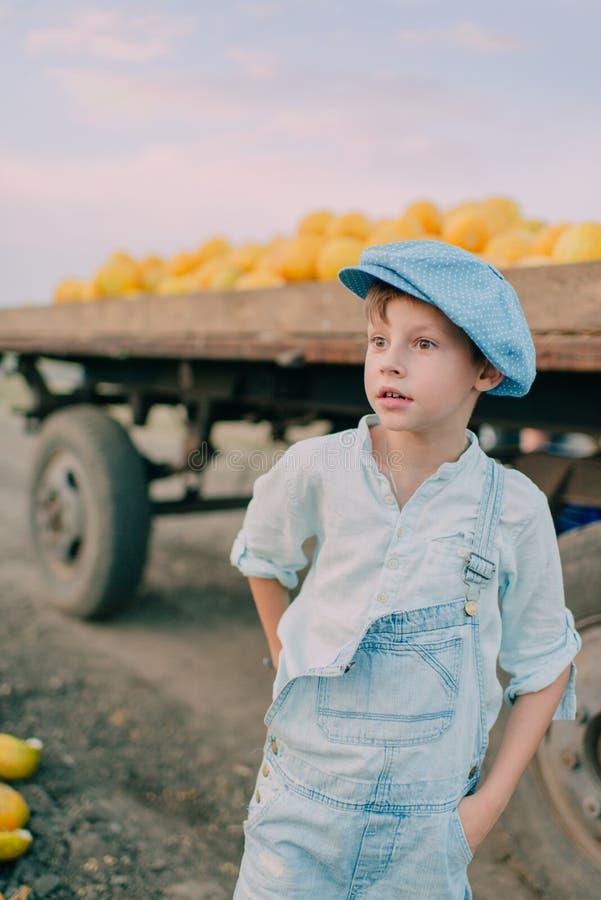 Muchacho en un carro con los melones amarillos imagenes de archivo