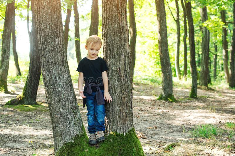 Muchacho feliz que descubre la naturaleza Niño alegre que juega en el parque en el día soleado Niño pequeño feliz en el paseo de  foto de archivo libre de regalías