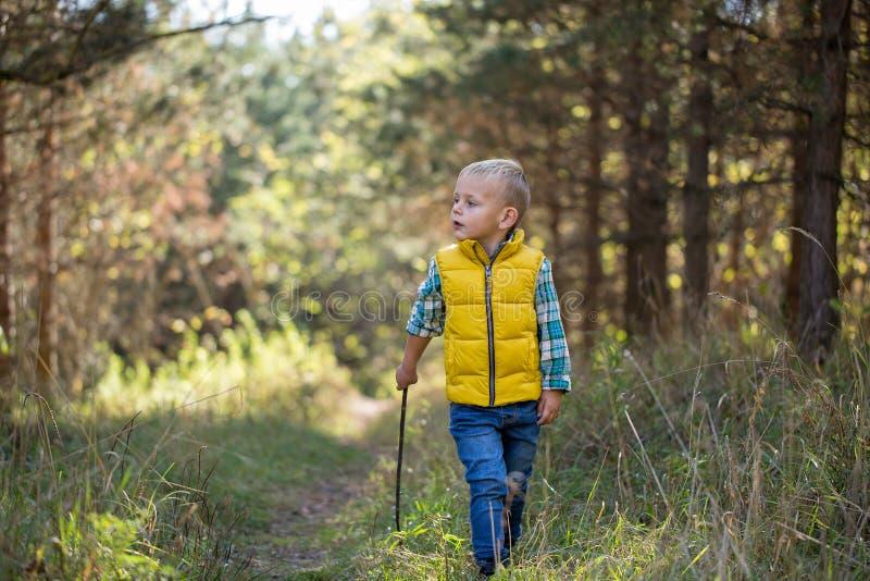 Muchacho joven con un palillo solo explorando el área imagen de archivo