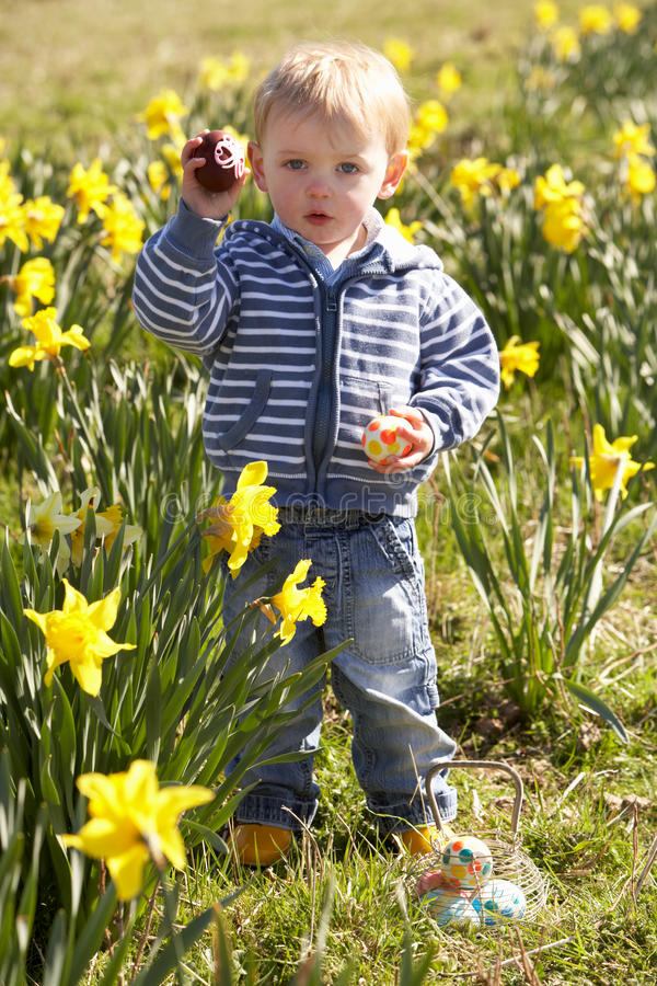 Muchacho joven en caza del huevo de Pascua en campo del narciso imagenes de archivo