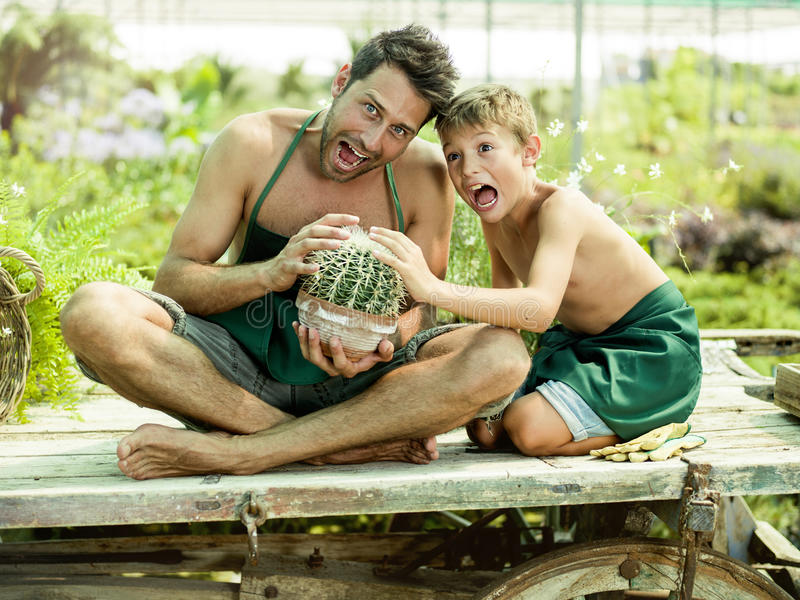 Muchacho joven que juega con su padre en un invernadero fotos de archivo