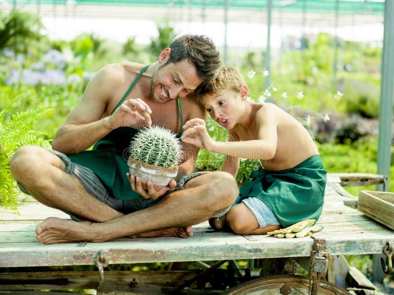 Muchacho joven que juega con su padre en un invernadero imagen de archivo libre de regalías