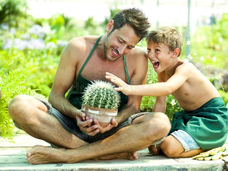 Muchacho joven que juega con su padre en un invernadero imágenes de archivo libres de regalías