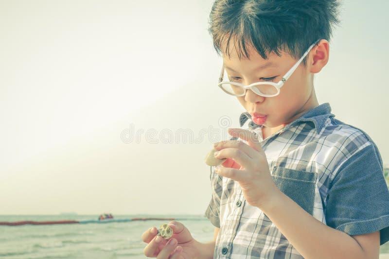 Muchacho joven que mira la cáscara en la playa foto de archivo libre de regalías