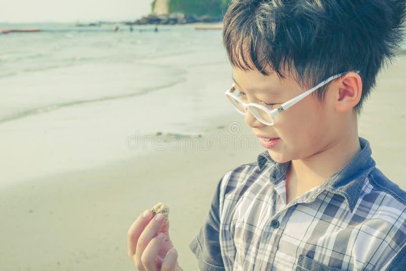 Muchacho joven que mira la cáscara en la playa imagen de archivo