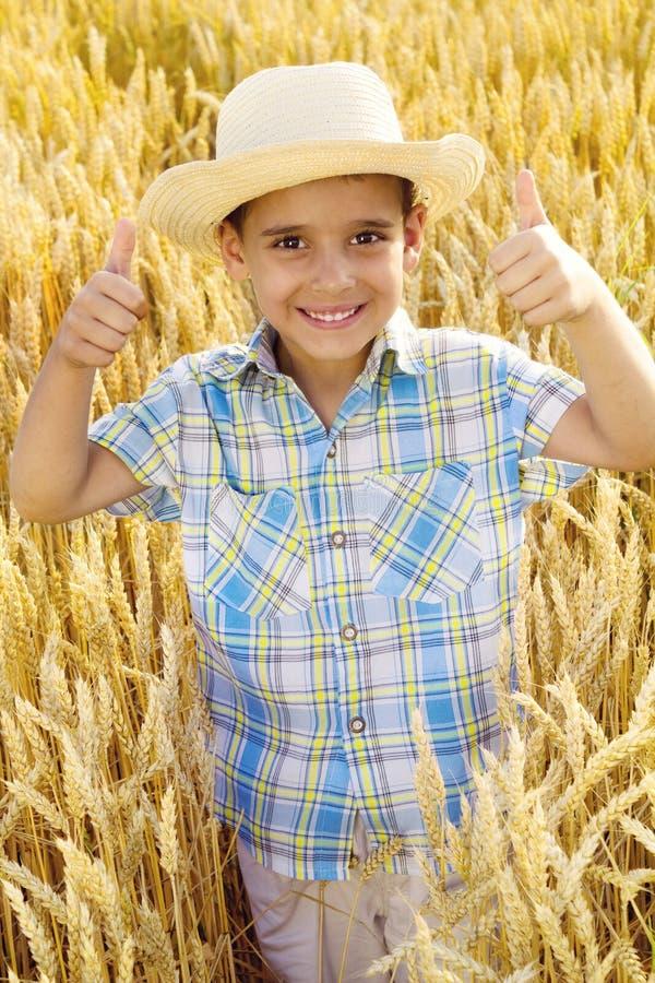 Muchacho joven sonriente con el sombrero de paja en un campo fotografía de archivo