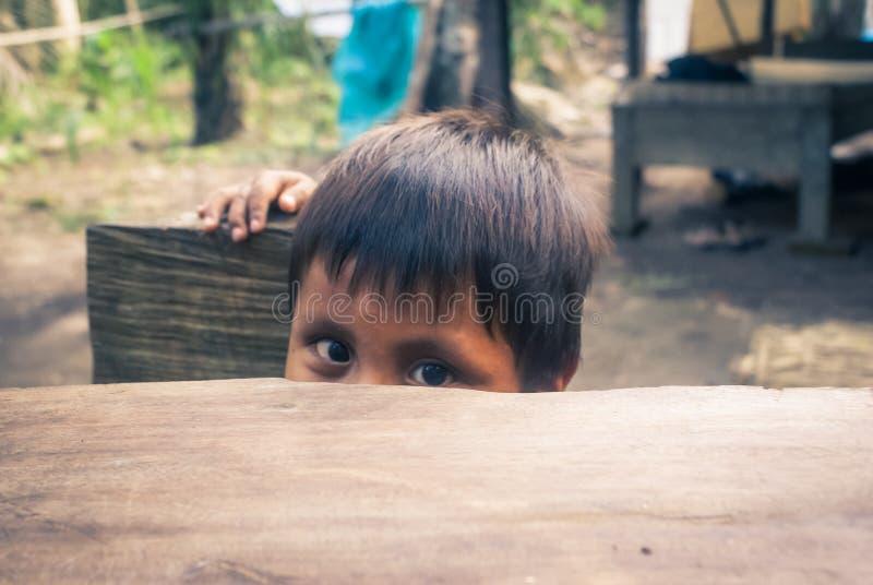 Muchacho joven tímido en Bolivia foto de archivo