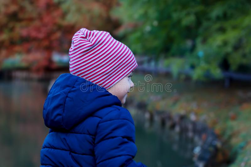 Muchacho lindo del niño en la ropa caliente del otoño que se divierte al aire libre fotos de archivo