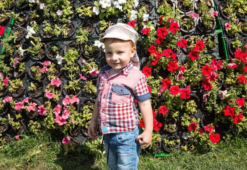Muchacho lindo del pequeño niño en parque en la naturaleza en el verano imagen de archivo libre de regalías