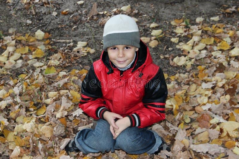 Muchacho lindo en hojas de otoño imagen de archivo