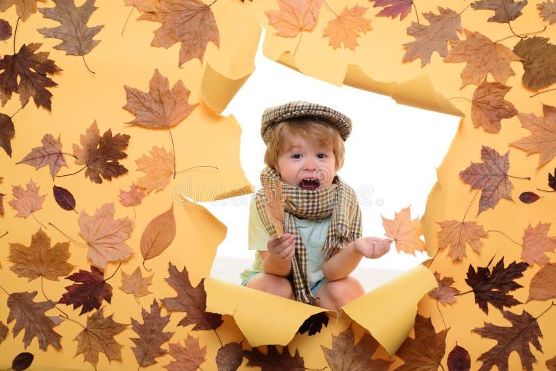 Muchacho lindo en ropa estacional con la hoja El niño pequeño se está preparando para el día soleado del otoño Muchacho en el oto foto de archivo