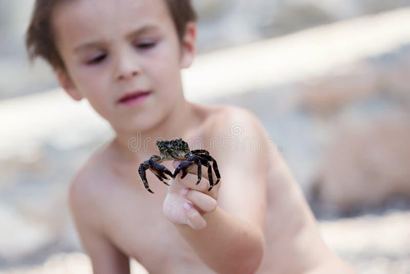 Muchacho lindo, jugando con el pequeño cangrejo en la playa fotos de archivo