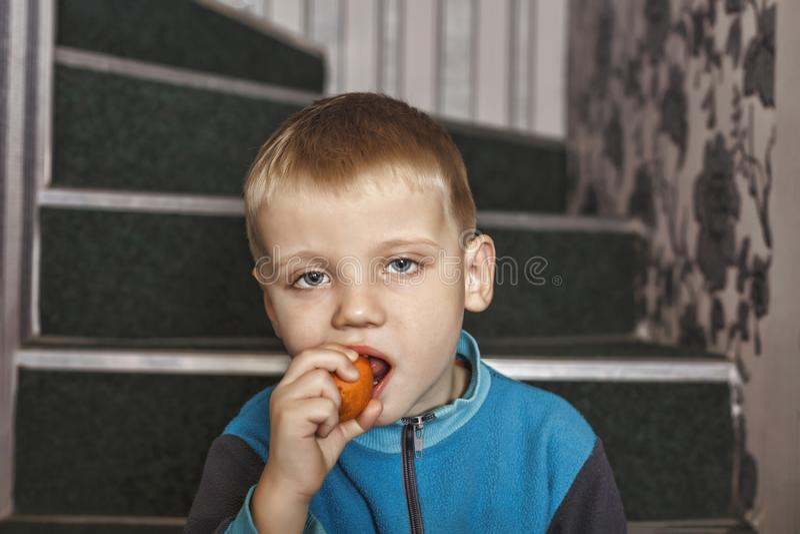 Muchacho, pequeño, zanahorias, comida, verduras, en casa fotos de archivo