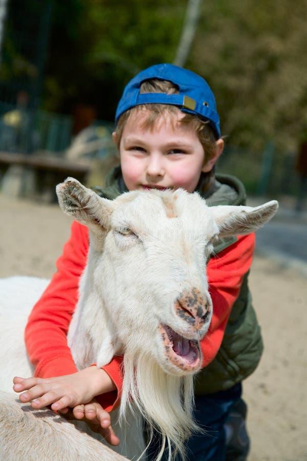 Muchacho que abraza una cabra imagen de archivo