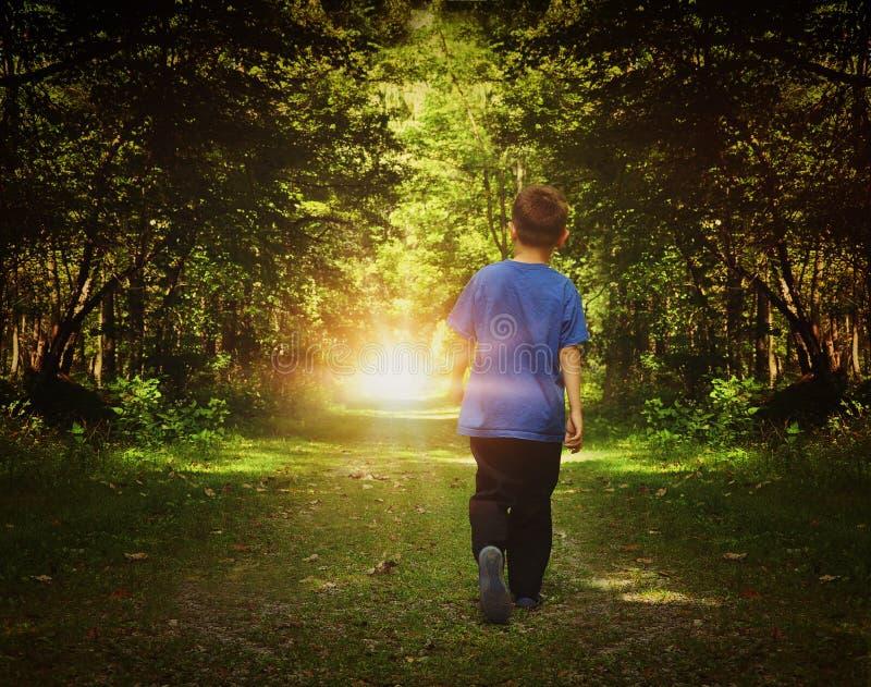 Muchacho que camina a la luz de Birght en bosque fotos de archivo libres de regalías