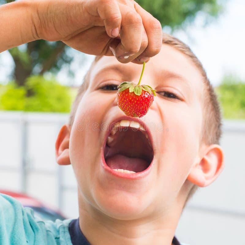 Muchacho que come las fresas fotografía de archivo