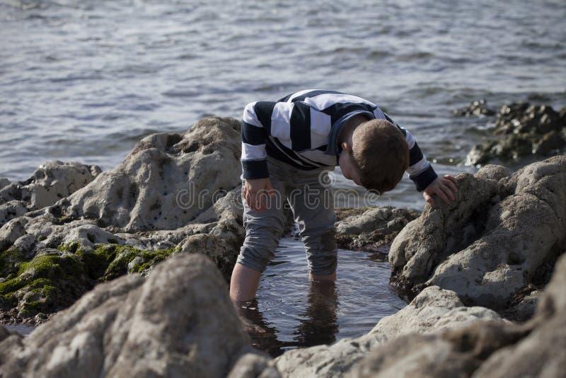 Muchacho que juega y que explora en piscinas de marea cerca del océano imágenes de archivo libres de regalías