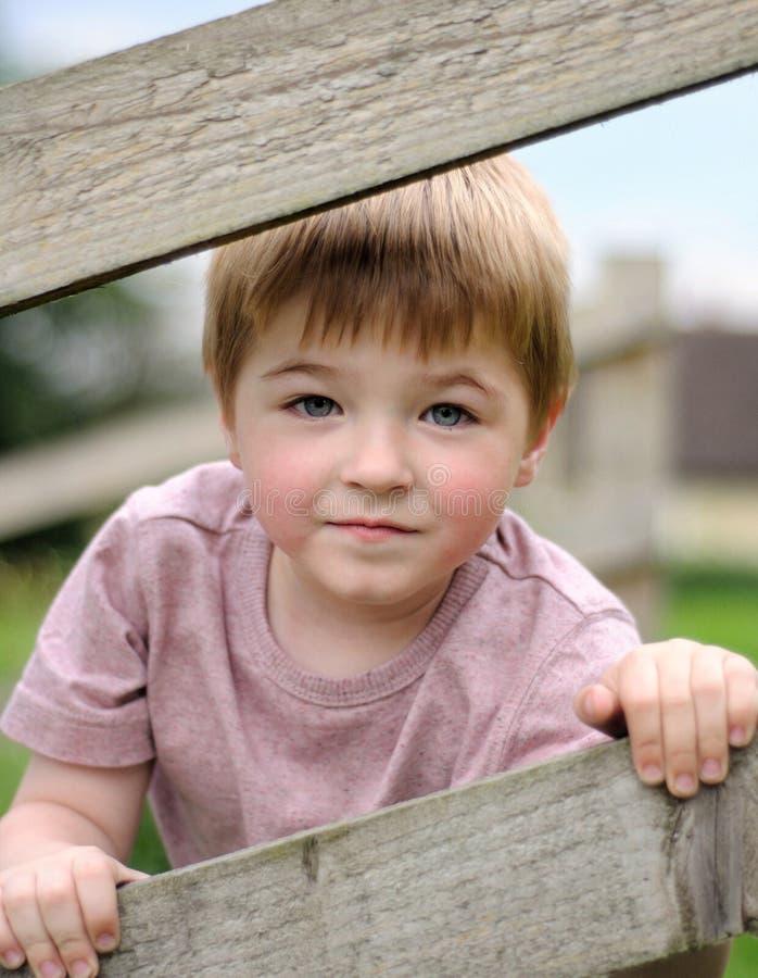 Muchacho que mira con hueco de la cerca. foto de archivo