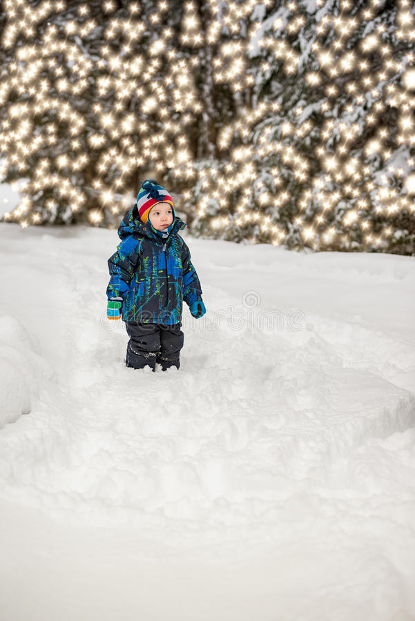 Muchacho que mira luces del árbol de navidad fotos de archivo