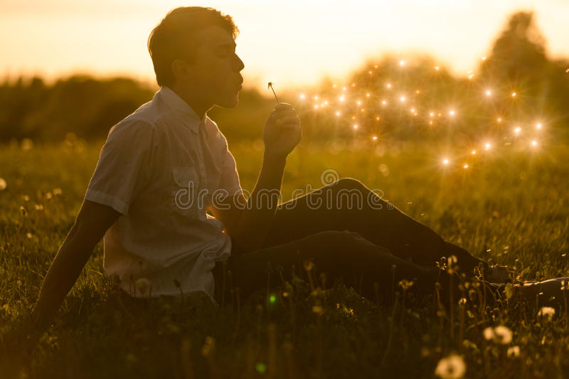 Muchacho que sopla un diente de león en la puesta del sol imagen de archivo