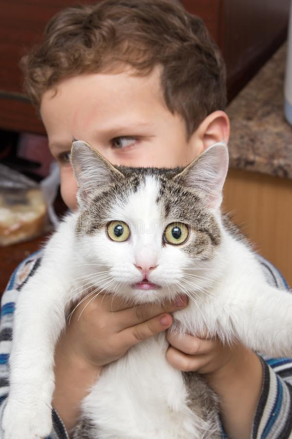 Muchacho que sostiene un gato foto de archivo libre de regalías