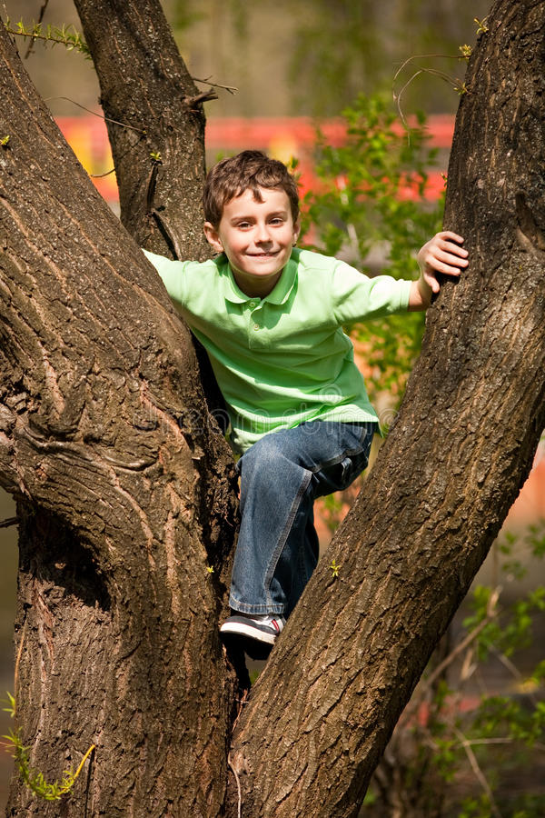 Muchacho que sube en árboles fotografía de archivo